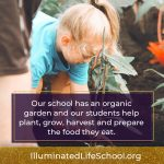 Illuminated Life School Organic Gardens